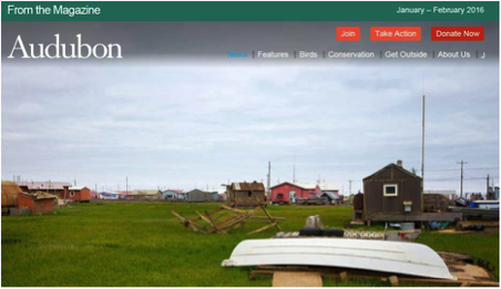 "Figure 4: Wainwright, Alaska. From the online version: ""The Iñupiat use portable houses and sandbags to shield themselves from rising waters and melting permafrost, but can they save their culture?"""